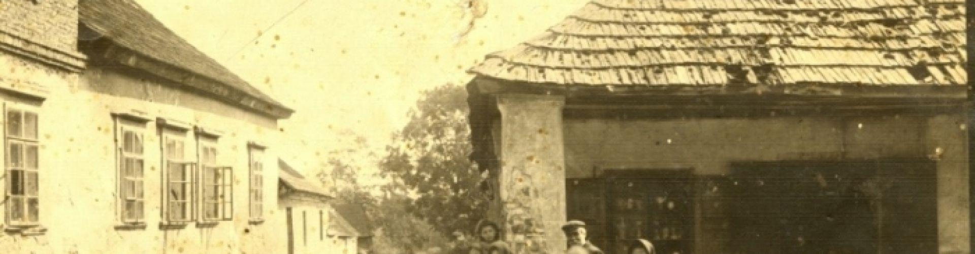 archiwum Barbary Sośnierz